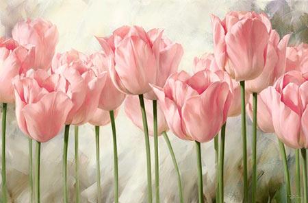 pink-harmony-shabby-chic-igor-levashov