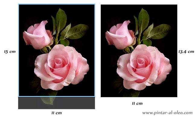 encuadre-de-imagen-en-lienzo