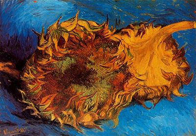 Pintar flores color naranja